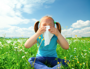 fight cold and allergies