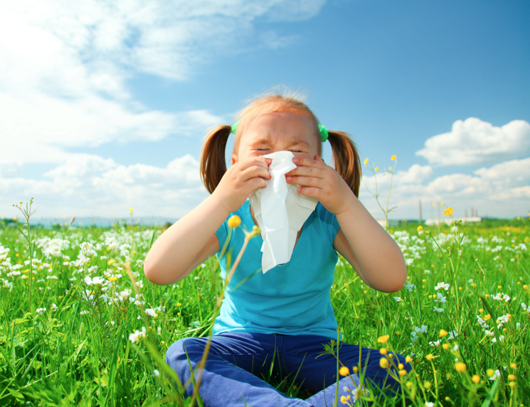 Fight your Spring Cold & Allergies!